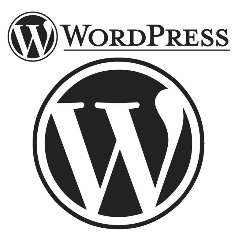 Profesjonalne tworzenie stron WordPress