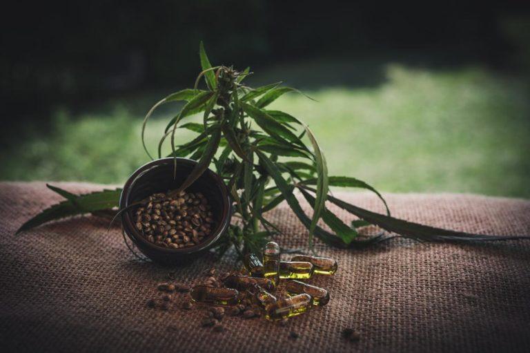 W jakich miejscach można pozyskać nawozy pod uprawianie marihuany?